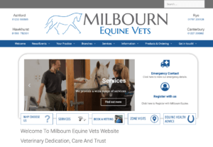 Equine Vets